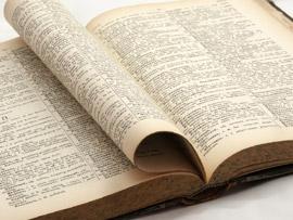Etymologie et définition du mot cagnotte