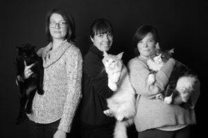 Les bénévoles de Felin'Possible 76et quelques heureux félins sauvés