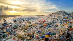 Les déchets plastique deviennent ingérables