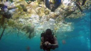 Les mers de plastique se multiplient sur les océans